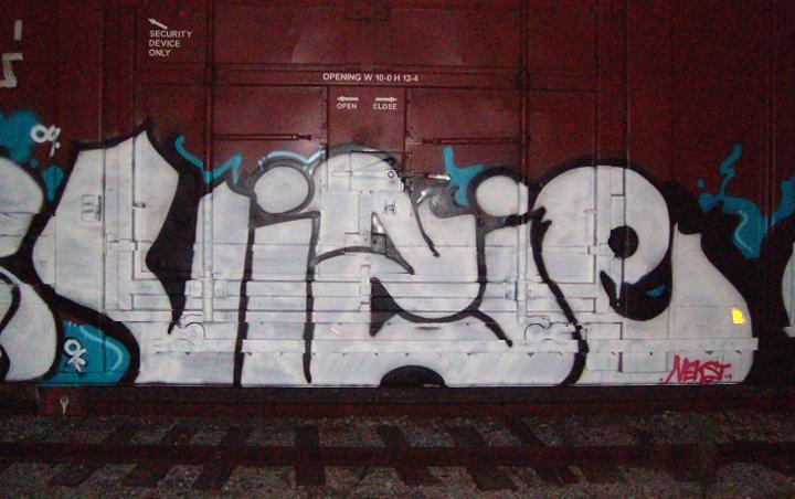 witvis002