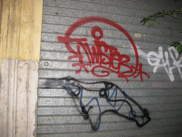IMG_1505